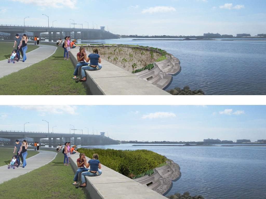 Michael_Singer_Living_Shoreline_Regeneration